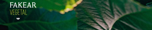 Fakear – Végétal : agréable mais sans surprises.